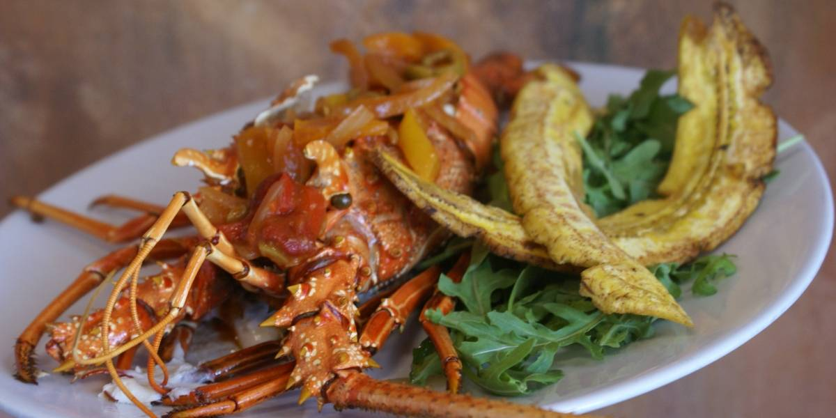 El Azafrán: restaurante gourmet casual en Vega Alta