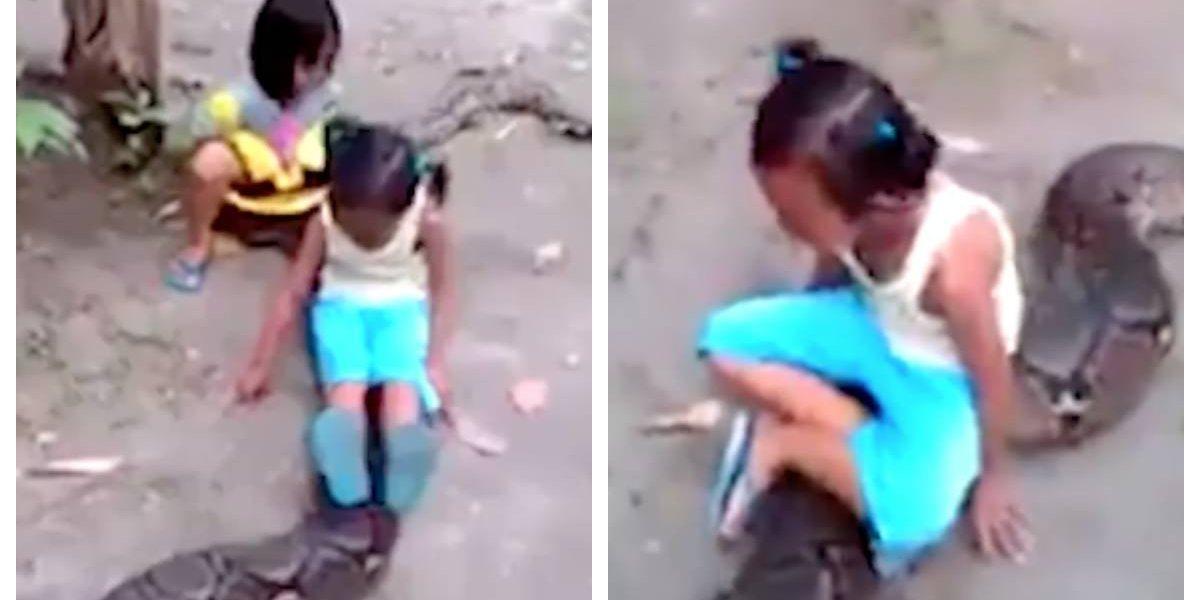 """¿Qué harías si fueran tu hijas? Padres dejan jugar a dos pequeñas con una gigantesca pitón y se le montan a """"caballito"""" sin medir el peligro"""