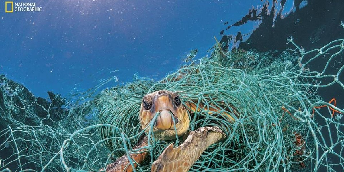 Las desgarradoras imágenes que revelan la magnitud de la crisis de plástico y su devastador impacto