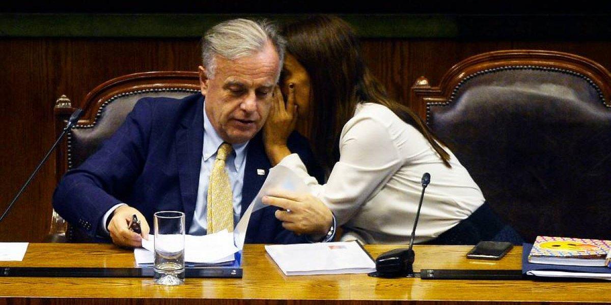 """Ministro de salud en el Congreso: el gobierno """"ha garantizado"""" aplicación de Ley de Aborto en el sistema público"""