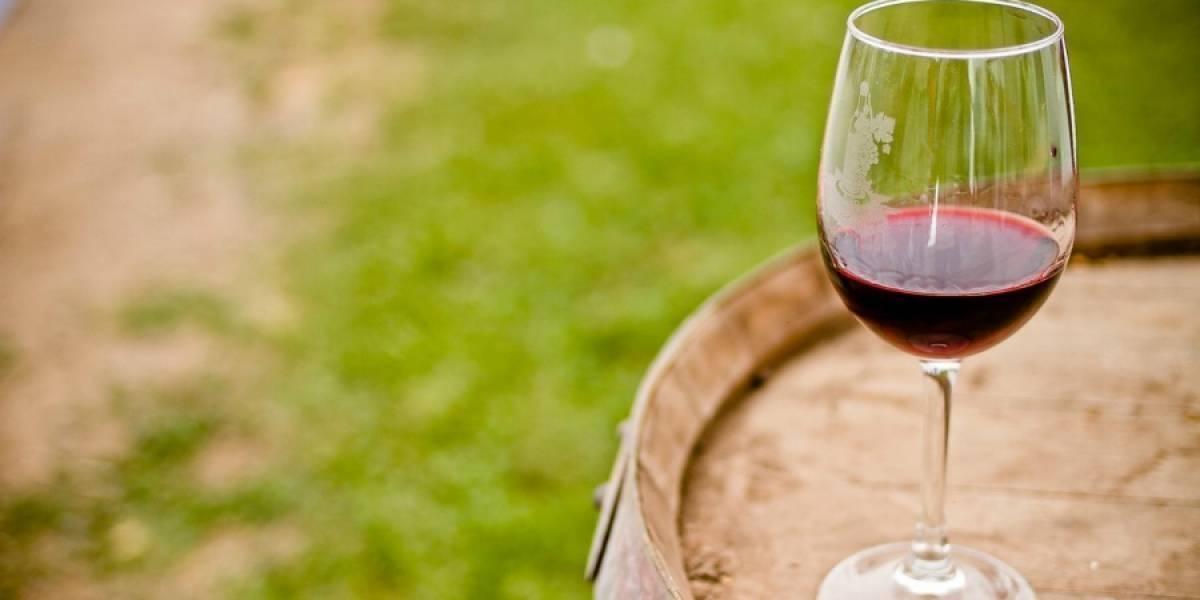 Exportaciones de vino chileno cierran un positivo primer trimestre: crecen 6,2% en valor