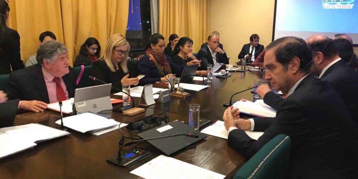 """""""Los niños no pueden esperar"""": diputados de oposición instan al gobierno a cumplir indicaciones de Ley de Adopciones"""