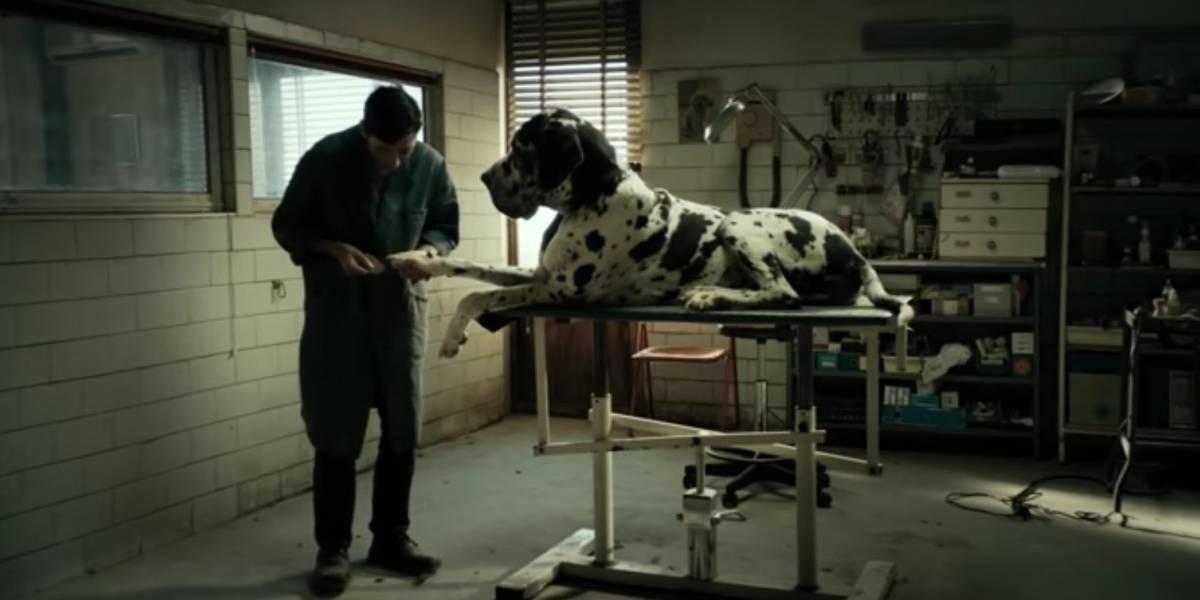'Dogman': western urbano de Garrone é destaque em Cannes