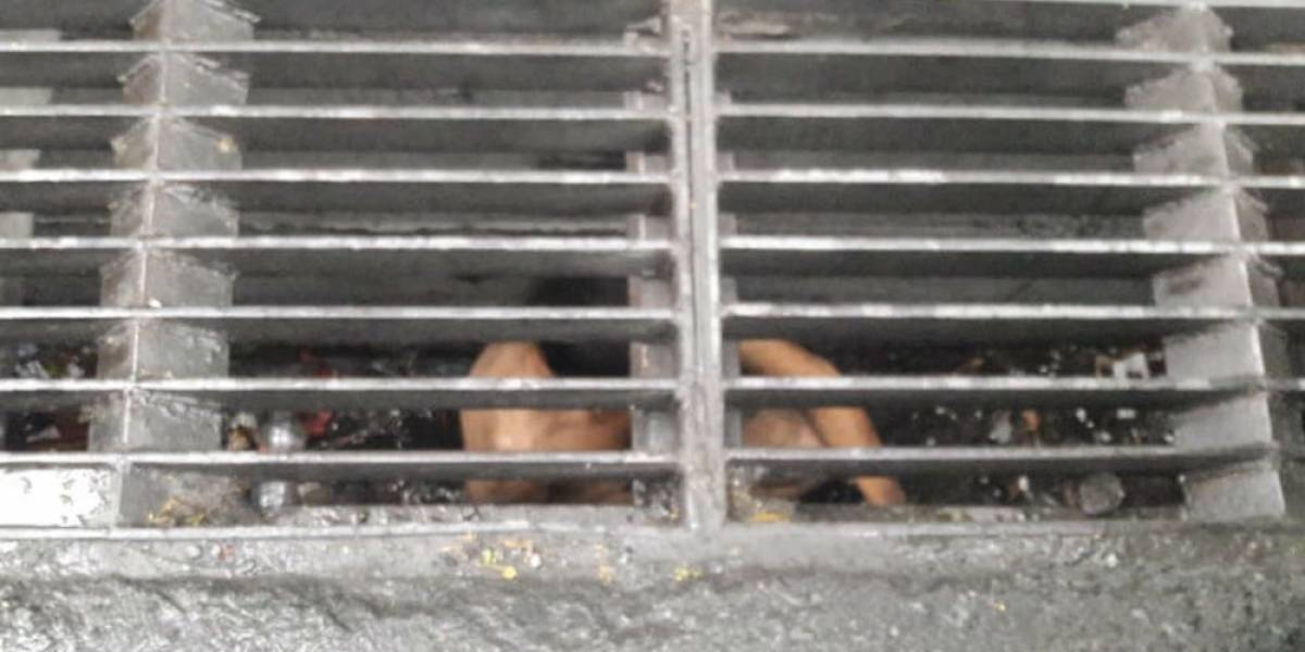 Rescatan a un joven de una alcantarilla en Guadalupe