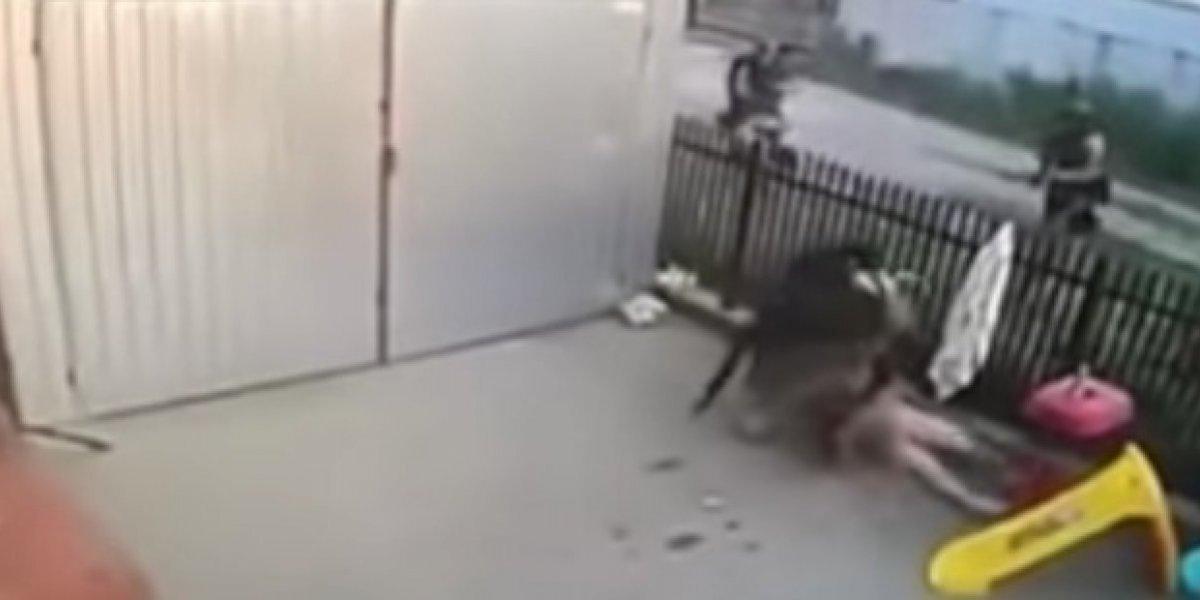 Hombre es atrapado completamente desnudo al intentar escapar de la policía