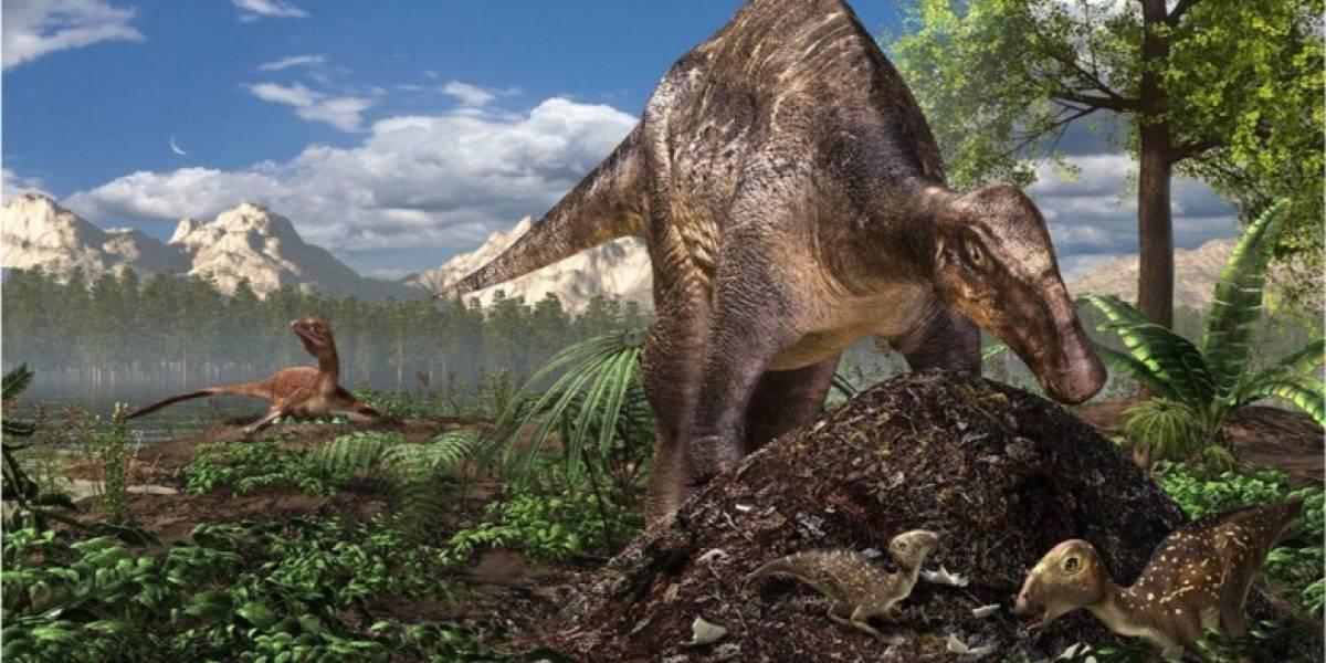 ¿Cómo hacían los grandes dinosaurios para incubar sus huevos?