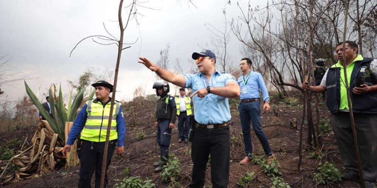 VIDEO. Neto Bran anuncia reforestación en El Naranjo