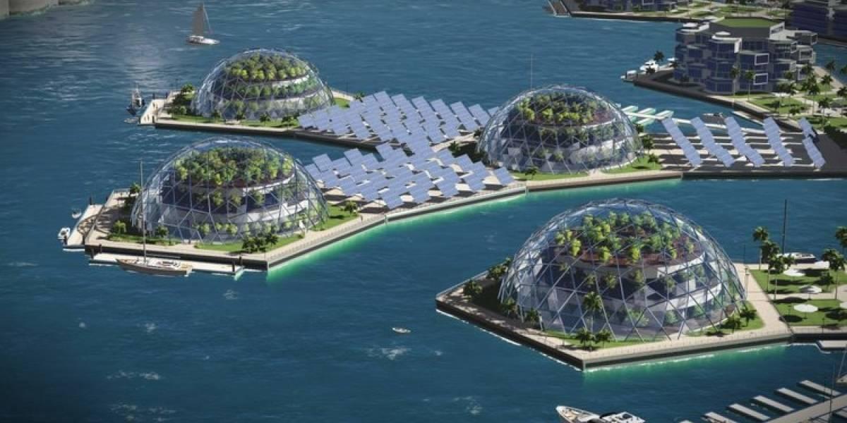 """Crearán una increíble """"nación flotante"""" con una criptomoneda propia en el Océano Pacífico"""