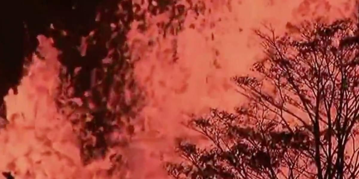 Coquíes se dejan sentir en impresionante video de volcán Kilauea en Hawaii