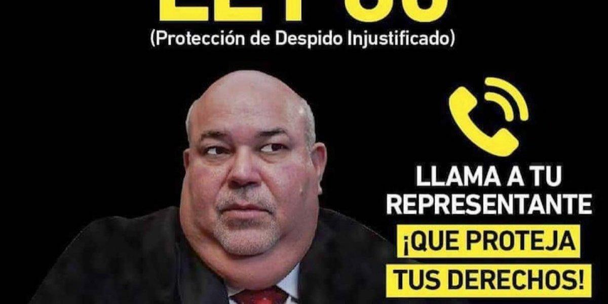 Lanzan campaña de cabildeo para que no eliminen la Ley 80