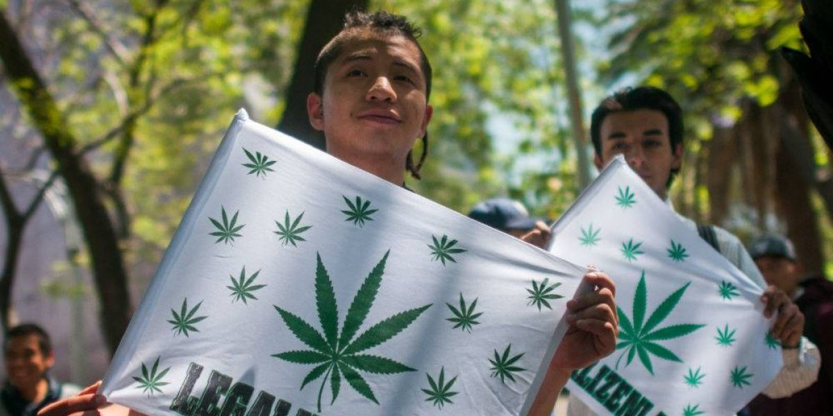 Autocultivo y uso lúdico de la marihuana, los ausentes de los presidenciales