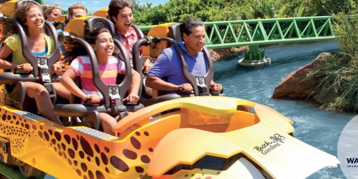 Veteranos y sus familias entrarán gratis a Sea World y Busch Gardens