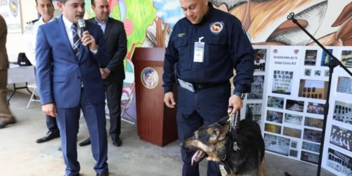 Departamento de Corrección y Rehabilitación actualiza su Unidad Canina