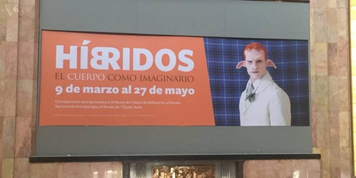 Presentan catálogo de la exposición 'Híbridos' en Bellas Artes