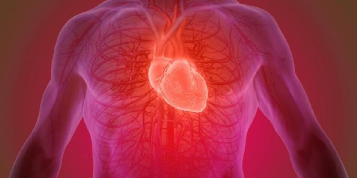 Cientistas criam curativo que pulsa para tratar sequelas de corações infartados