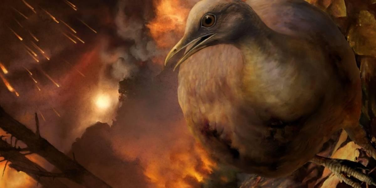 Como ancestrais das aves modernas sobreviveram a queda do meteoro