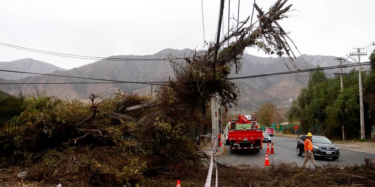 Mapa de los afectados: algunas ráfagas de viento y ya tenemos 23.264 clientes sin luz en Santiago