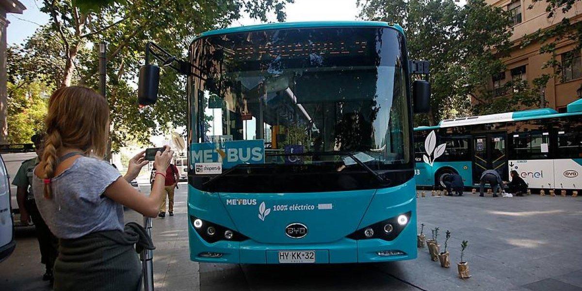 Trasantiago se recarga: Ñuñoa y Peñalolén serán los primeros en recibir los 120 buses eléctricos que llegarán a Chile este año