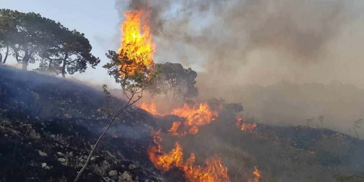 Presentan denuncia por devastador incendio en La Primavera