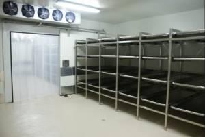 En el Inacif hay cuartos fríos para conservar los cadáveres.