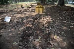 En el cementerio La Verbena, en la zona 7, hay cuatro sectores para XX.