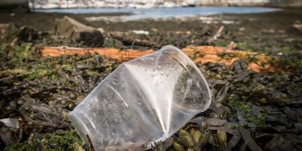 Los productos plásticos que la Unión Europea busca prohibir
