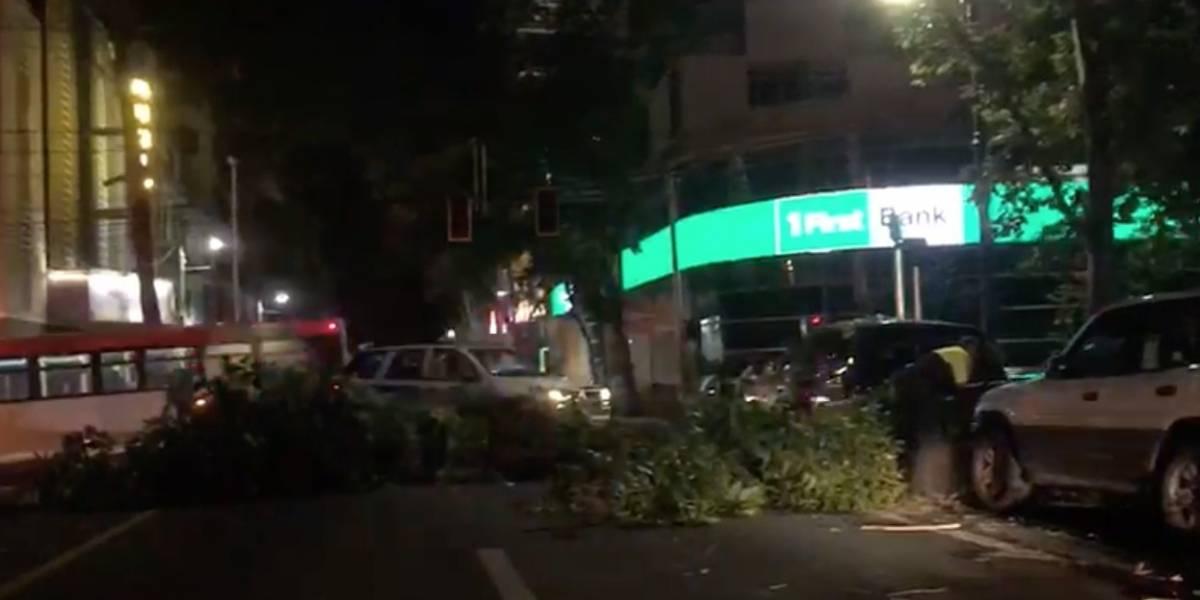 Cierran tramo de la avenida Ponce de León por árbol caído
