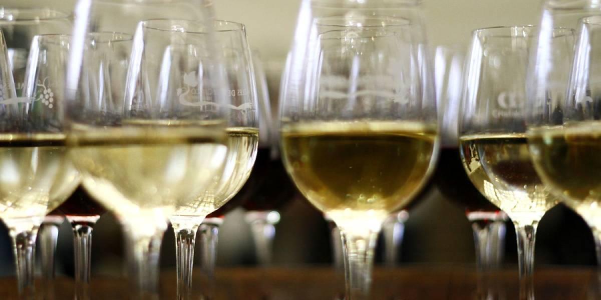 Crece la exportación de vinos chilenos al mundo