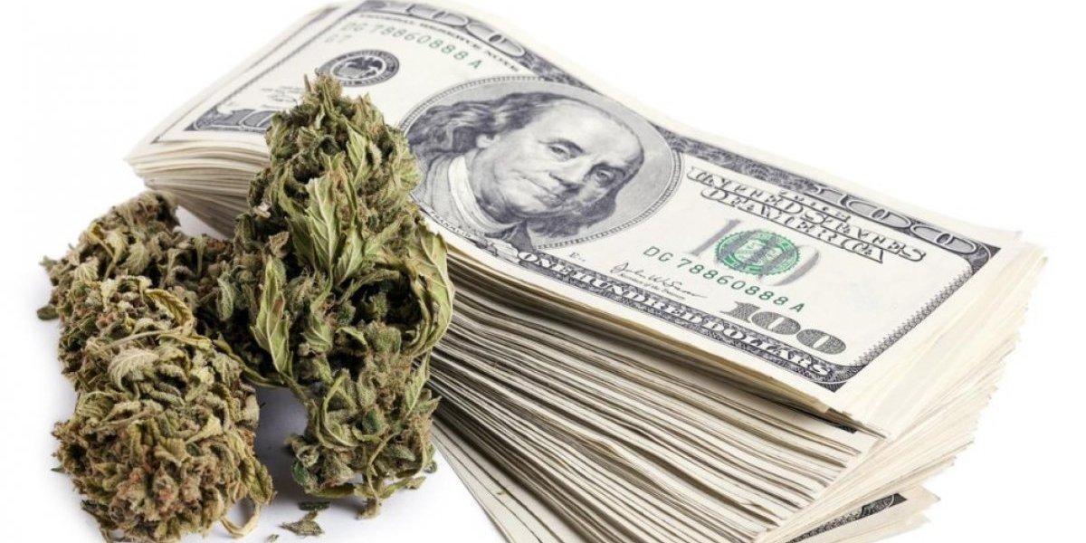 """Un """"banco"""" muy especial: senado de California promueve sistema para las millonarias finanzas de la marihuana"""