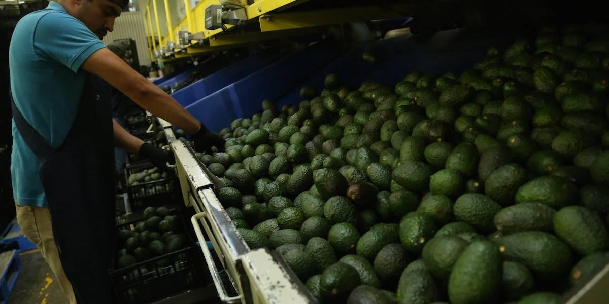 OCDE mejora previsiones de crecimiento económico para México