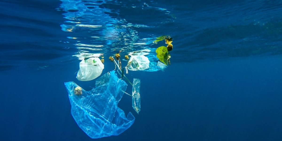 En 2050 los océanos tendrán más plástico que peces y Chile está dando el ejemplo al mundo con ley contra las bolsas en el comercio