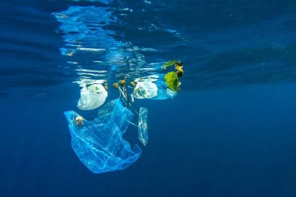 bolsas plástica