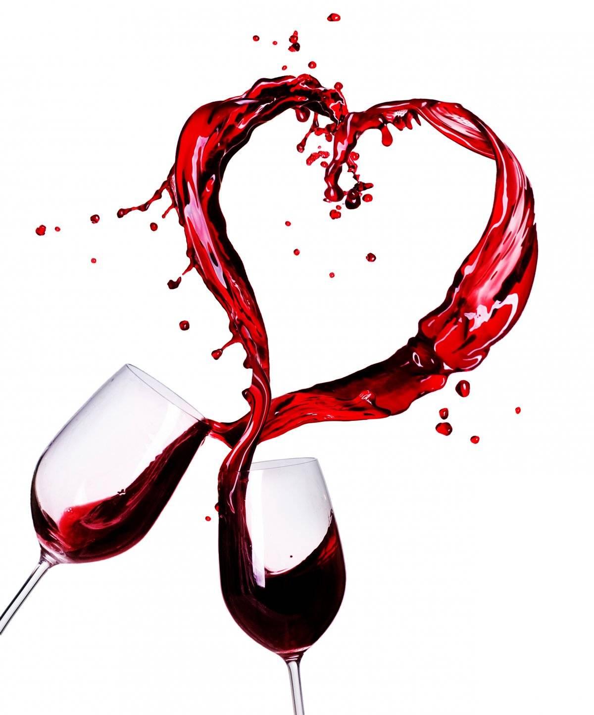 Degusta los mejores vinos nacionales e internacionales en San Luis Potosí