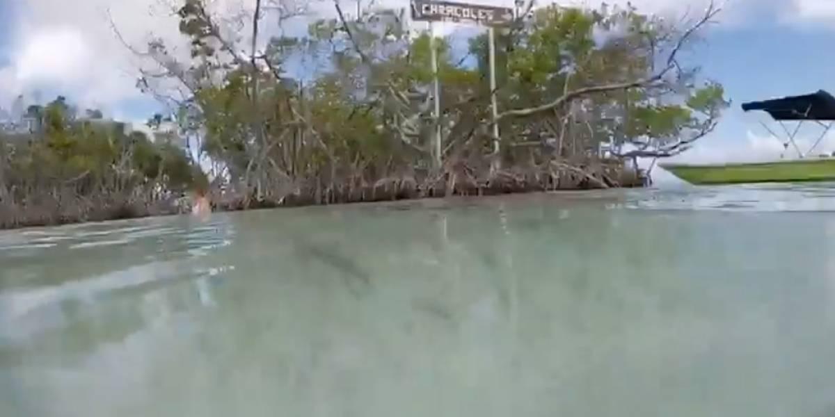 Buscan crear área de bañistas en Cayo Caracoles en La Parguera