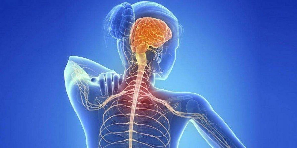 ¿Sabes cómo tratar la Esclerosis Múltiple?