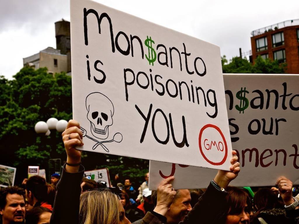 Grave: Monsanto admitió que usó pesticida tóxico prohibido en cultivos de Hawái