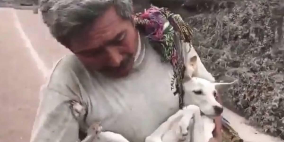Video: Afectado por erupción del Volcán de Fuego en Guatemala logró rescatar a su perro