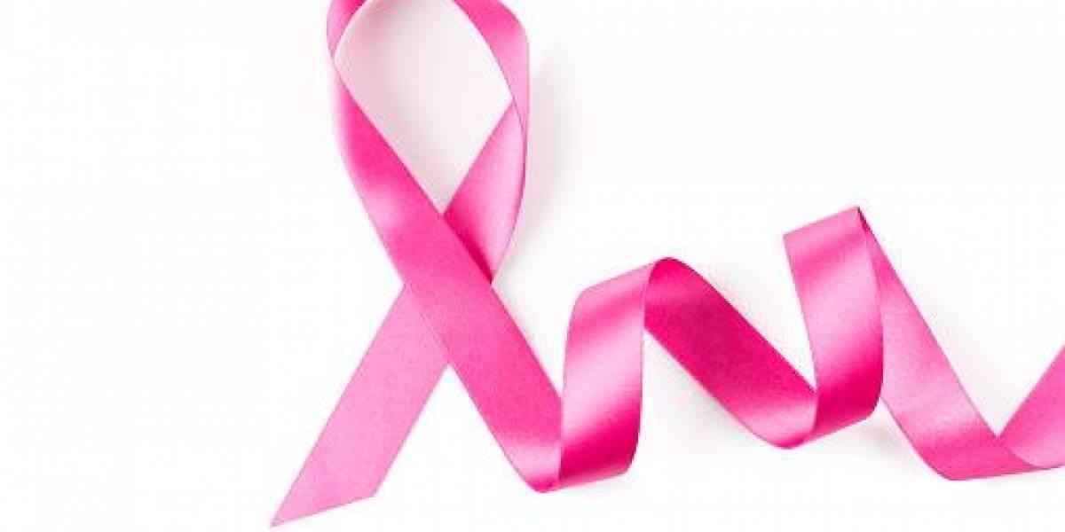 La alimentación es vital para prevenir el cáncer de mama