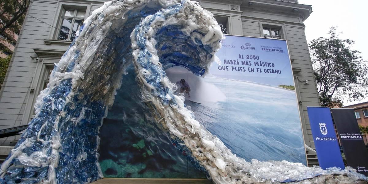 Día mundial del medio ambiente: Así deberíamos avanzar respecto al reciclaje
