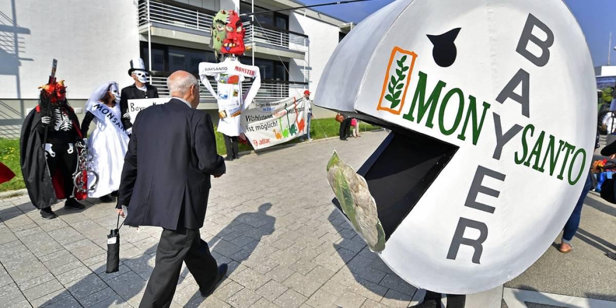 Qué hay detrás de que Bayer entierre la marca Monsanto