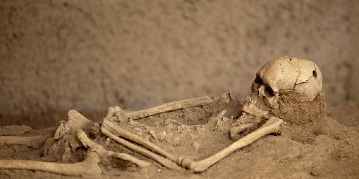 Homem encontra esqueleto do ex-marido da esposa enterrado no quintal de casa