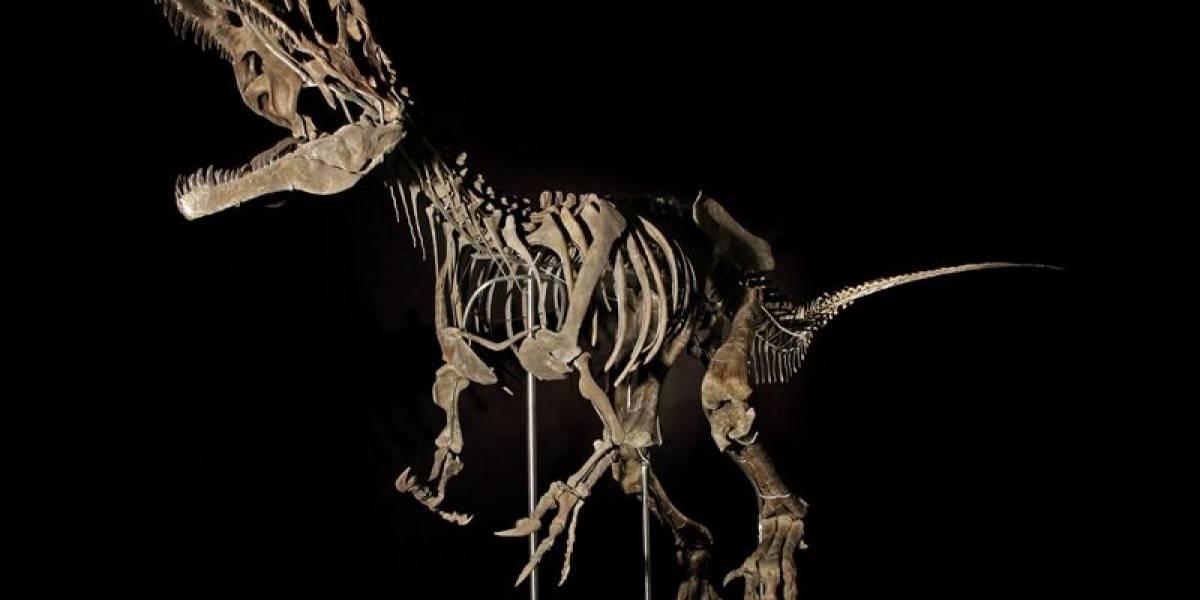 Fósil de especie desconocida de dinosaurio es subastado y vendido en más de dos millones de dólares