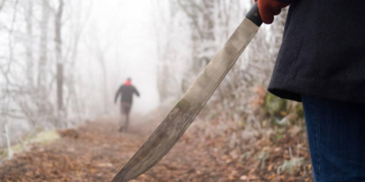 Un héroe de la vida real: persiguió a ladrón con un machete solo para rescatar los tres perritos que le había quitado