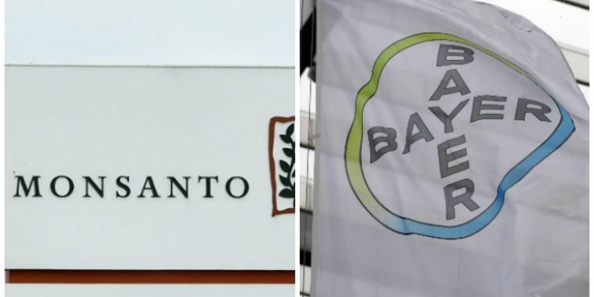 Chile también aprueba compra de Bayer a Monsanto, pero con condiciones