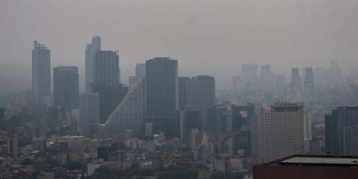 Doble Hoy No Circula aplica este jueves por contingencia ambiental