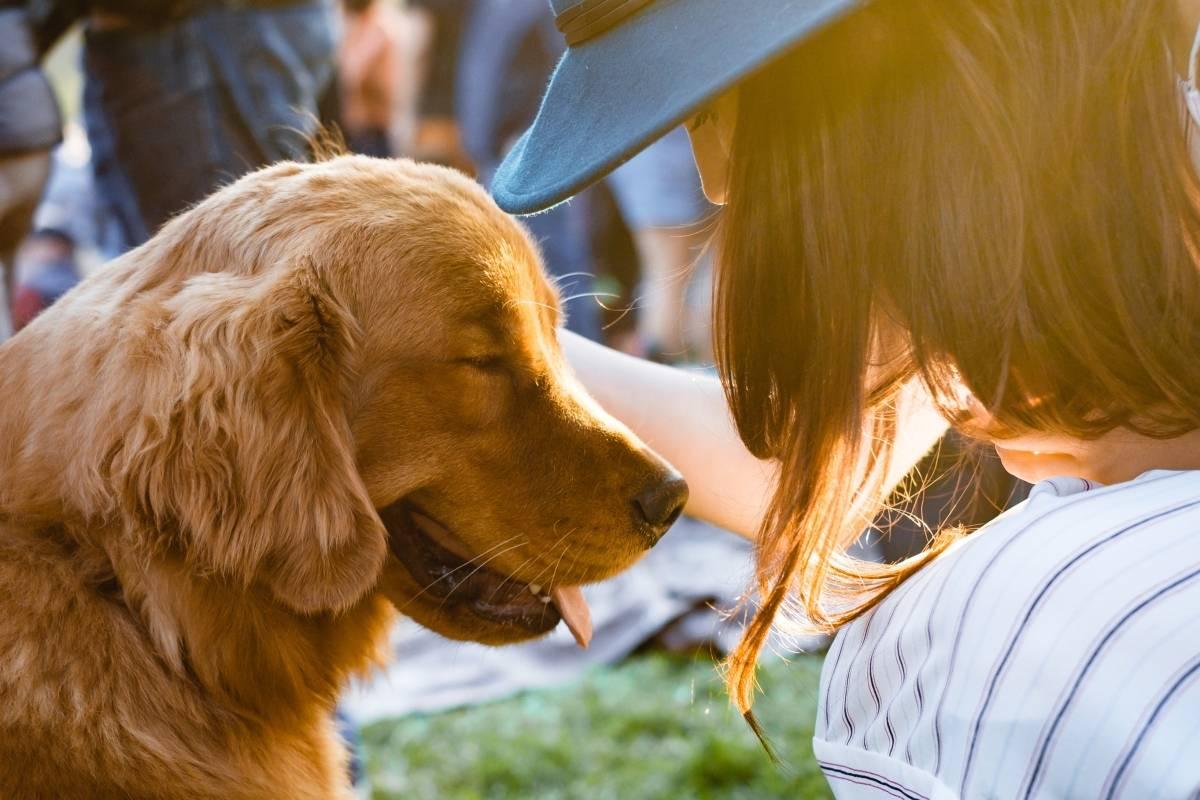 Hablar con tu mascota te hace más inteligente