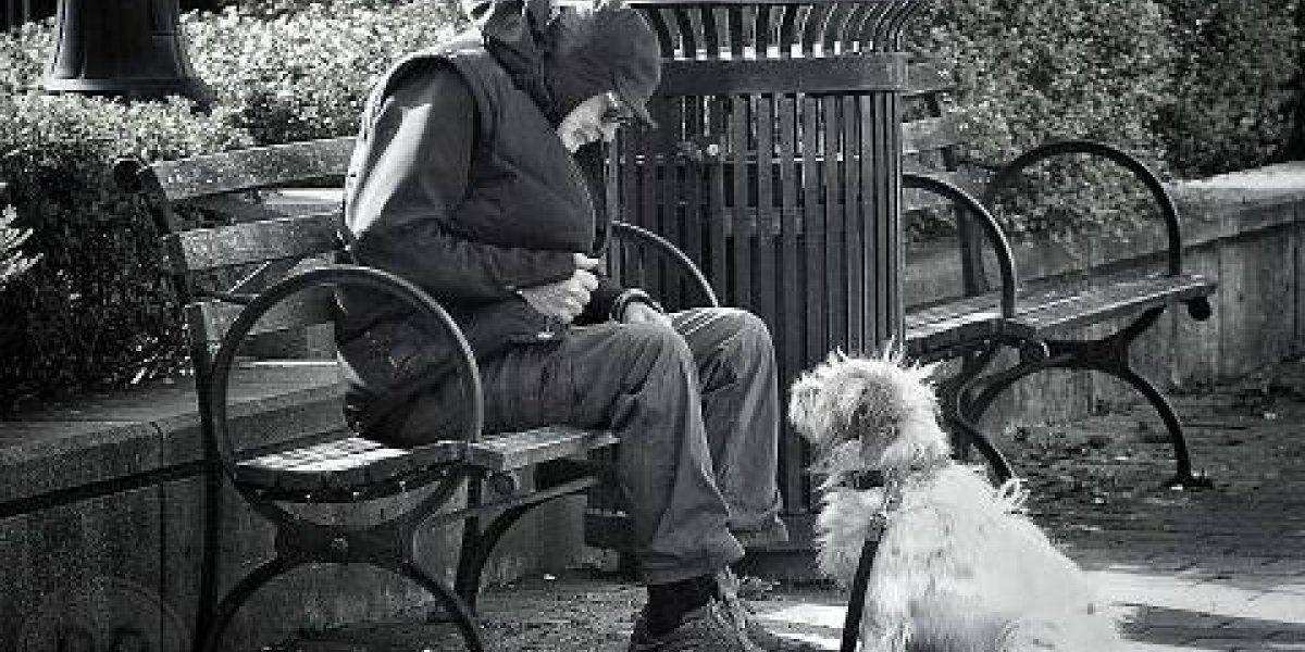 """""""Si te atropellan y algo te pasa, me muero"""": el tierno diálogo entre un anciano y su perrito que derritió el corazón de las redes sociales"""