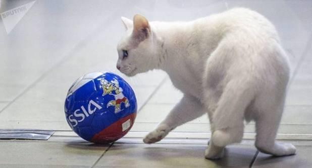 Aquiles juega con un balón