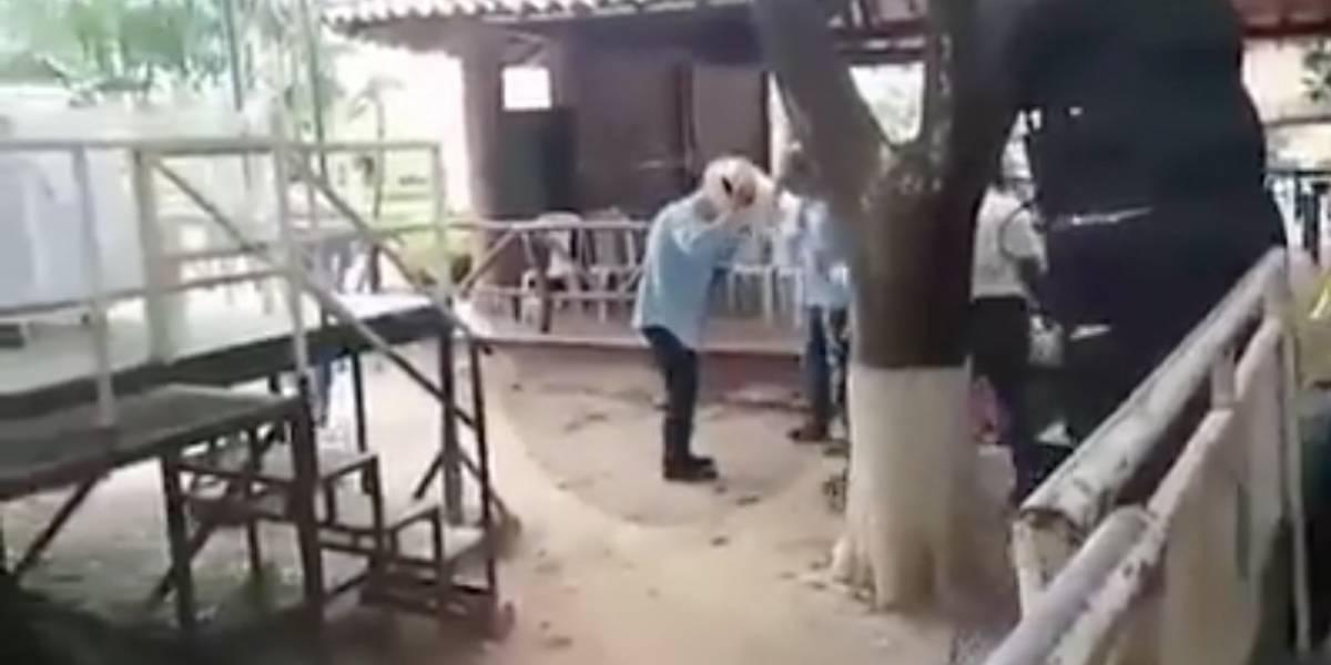 Así fue el ataque de las abejas a evento de Uribe en La Loma