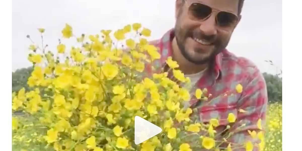 Dia dos Namorados: Evaristo Costa colhe flores do campo para sua mulher